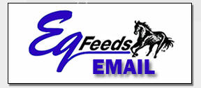 Email Eq Feeds